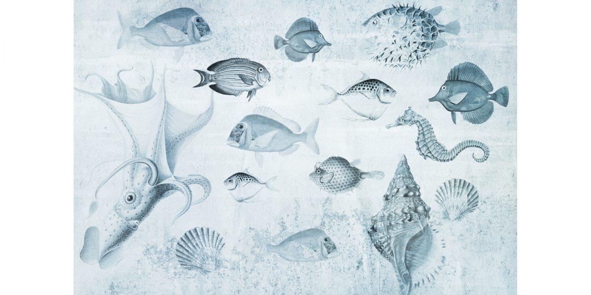 01 Aquarium blu