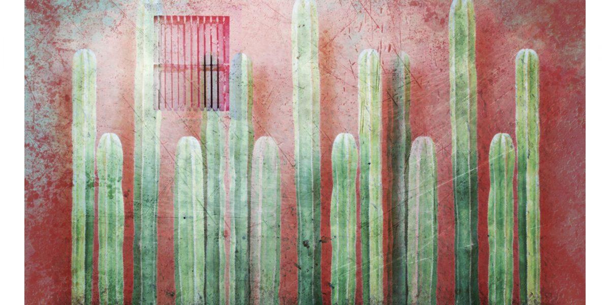 01 Cactus