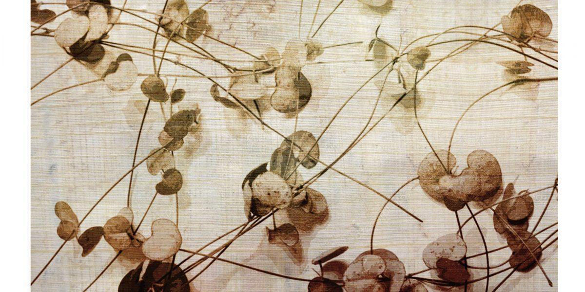 02 Leaves