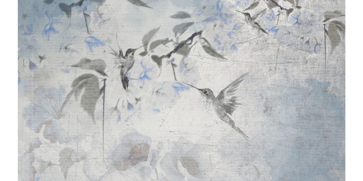 03 Colibrì blu
