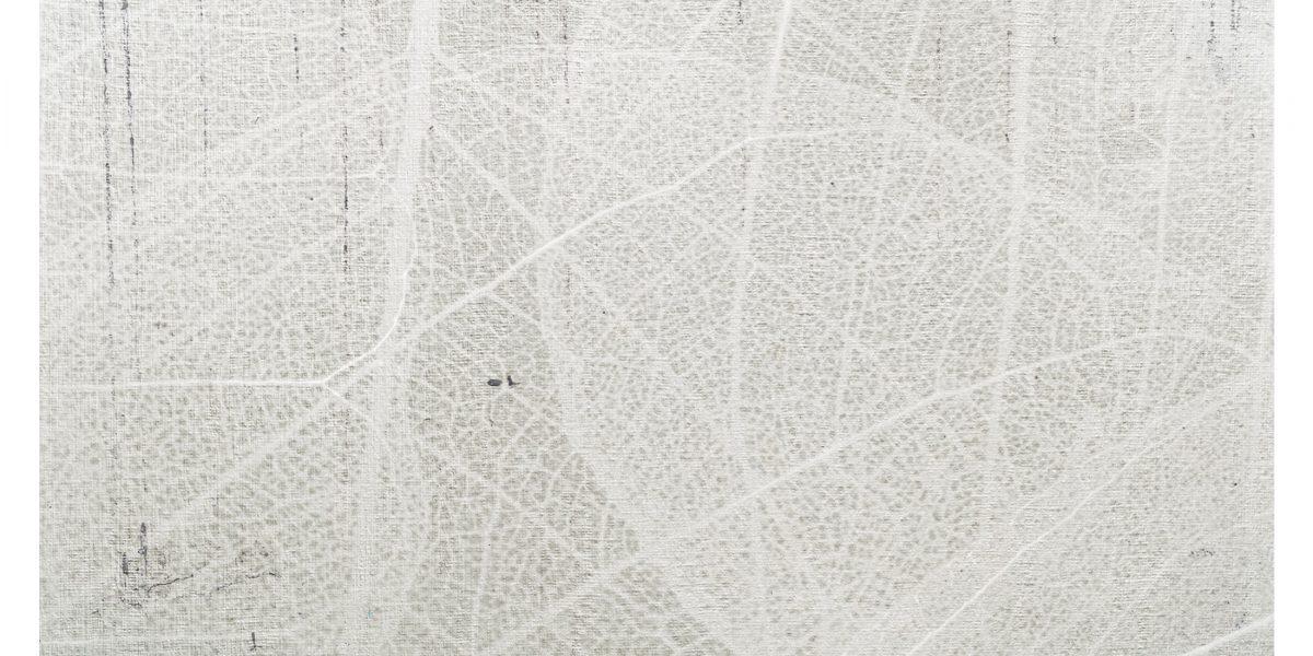 03 Leaf