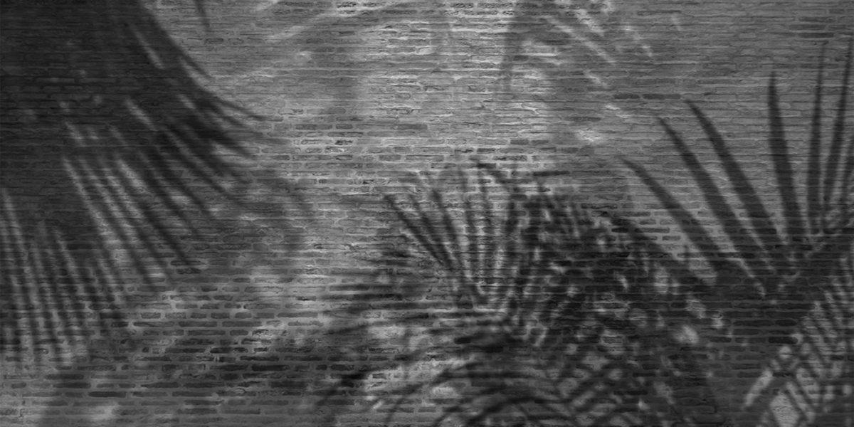 14_Palms