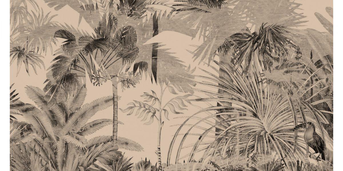 17 Palms