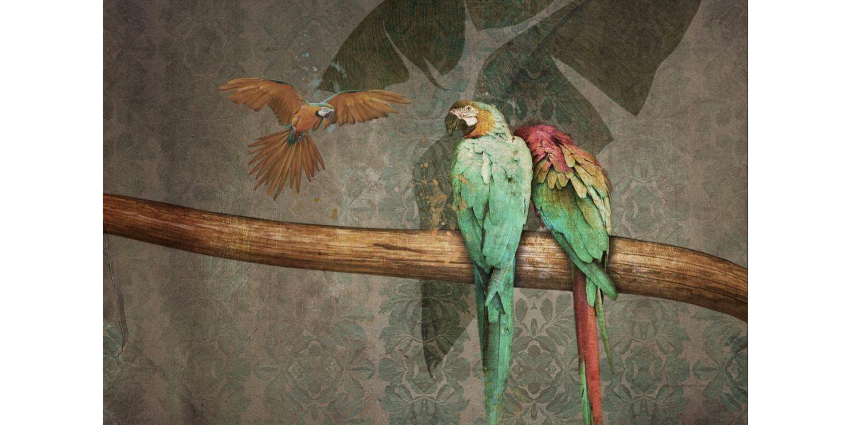 22 Parrots