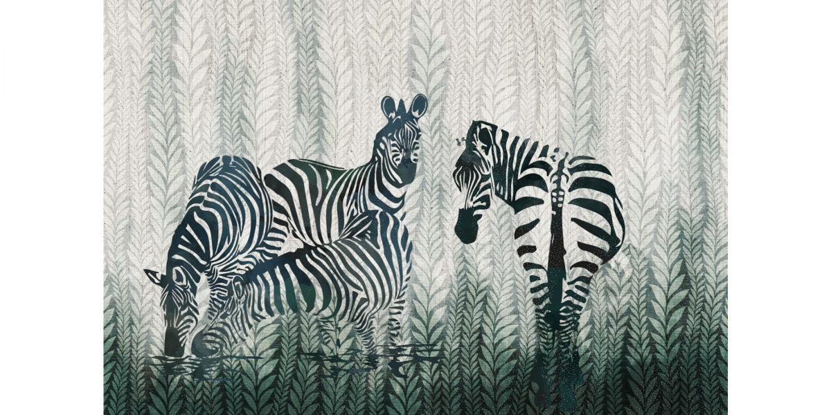 26 Zebre